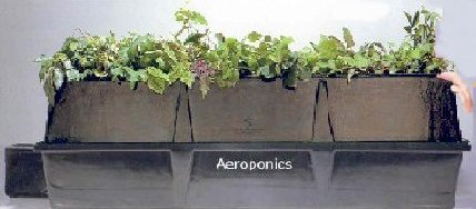 Grow Plants in Air - No soil needed